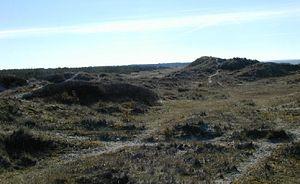 Tisvilde - Image: Tisvilde landscape