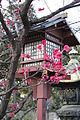 Tokyo Spring Picture 2006 Nr. 1.JPG