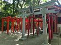 Toriis of Arakuma Inari Shrine and Shirahige Inari Shrine in Sumiyoshi Shrine 2.JPG