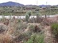 Torrent del Terme - 20210626 165700.jpg