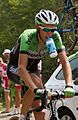 Tour de France 2013, gesink (14869793295).jpg