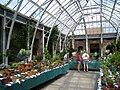 Tower Hill Botanic Garden - orangerie (interior).jpg