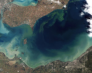 Algal bloom - Image: Toxic Algae Bloom in Lake Erie