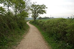 Track near Over Farm - geograph.org.uk - 435515.jpg