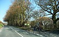 Tractor going down Spiers Lane - geograph.org.uk - 1212389.jpg