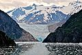 Tracy Arm Fjord - panoramio - Jack Borno (2).jpg