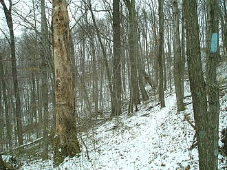 Buckeye Trail - Image: Trailattarhollow