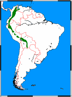 Tremarctos ornatus range map.png