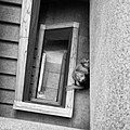 Treppenaufsicht (29775627785).jpg