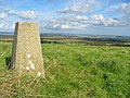 Trig Station, Knowle Hill, Dorset. - geograph.org.uk - 63937.jpg