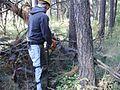 Turnbull National Wildlife Refuge (4709468316).jpg