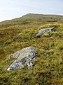 Twin rocks on featureless ridge - geograph.org.uk - 48860.jpg