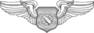 USAF - Air Battle Manager Wings.png