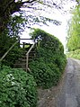 Up to the footpath - geograph.org.uk - 486198.jpg