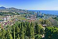 Urban panorama with forest plantations in the foreground and the sea and mountains on the horizon.jpg