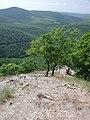 Vadálló-kövek - panoramio.jpg