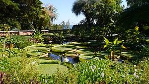 Jardin botanique exotique de Menton - Image: Val Ramheh 2