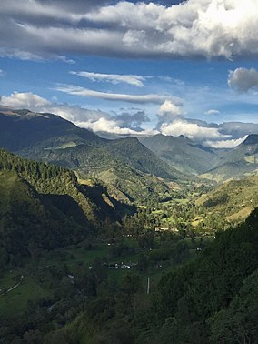 Valle del cocora - general view.jpg