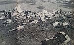Victims of Mokusei-go crash 1.jpg
