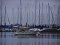 Victoria Boats.JPG