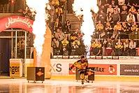 Vienna Capitals vs Fehervar AV19 -56.jpg