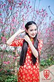 Vietnamese girl wearing ao dai 3.jpg