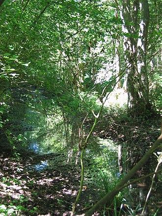 Tancarville - The vivier (park) of Tancarville