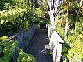 Waiatarua, Auckland, New Zealand - panoramio (1).jpg