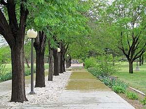 Walkway outside Golden Library at Eastern New ...