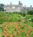 Walmer Castle - panoramio (2).jpg