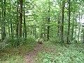 Wanderweg bei Aidlingen - panoramio.jpg