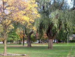 The park the neighbourhood is named for