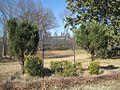 Ward Memorial Cemetery Lucy TN 003.jpg