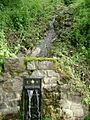 Water feature, Ugbrooke Park - geograph.org.uk - 1364202.jpg