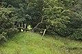 Waymarker on path to Abbeystead - geograph.org.uk - 1408795.jpg