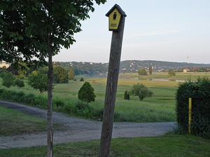 Waldschlösschen Bridge - Construction location in 2003