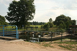 Weir in Starosty on Lega river 01.JPG