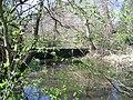 Weir on pond, Calke Park - geograph.org.uk - 401822.jpg