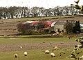 Wester Muirhouse Farm - geograph.org.uk - 1004992.jpg