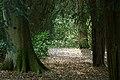 Westonbirt Arboretum - geograph.org.uk - 39172.jpg