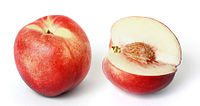 White nectarine and cross section02 edit.jpg
