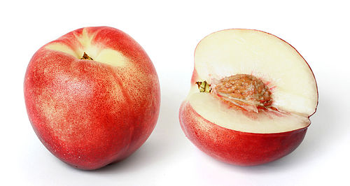 Nectarine and cross-section