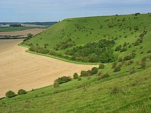 Whitesheet hill.jpg