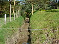Wildlife barriers and traps at Lake Naivasha 08.JPG