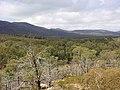 Wilpena Pound, Flinders Range, Wangarra Lookout - panoramio.jpg