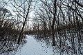 Winter Hike - Trail at William O'Brien State Park, Minnesota (38414125245).jpg