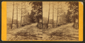 Wissahickon Lane, by Bartlett & French 2.png