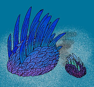 <i>Wiwaxia</i> Genus of Cambrian animals