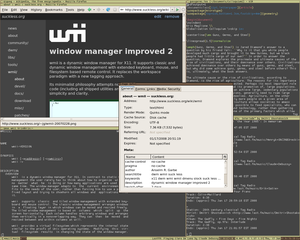 Wmii - Image: Wmii 3.6 screenshot