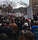 Women's March 2017 Asheville.jpg